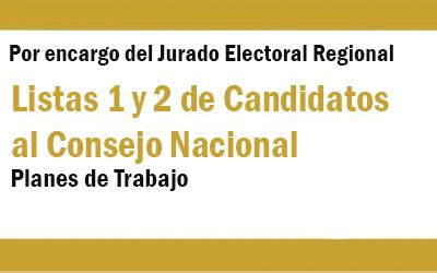 LISTAS DE CANDIDATOS AL CONSEJO NACIONAL  | NotiCAPLima 147/148 -2019